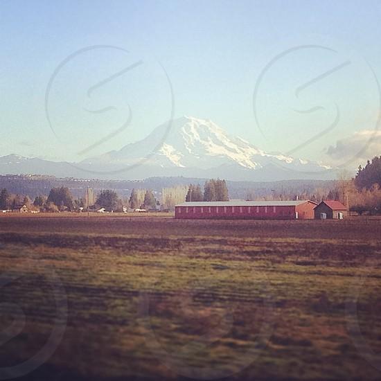Mt. Rainier landscape from train window.  photo