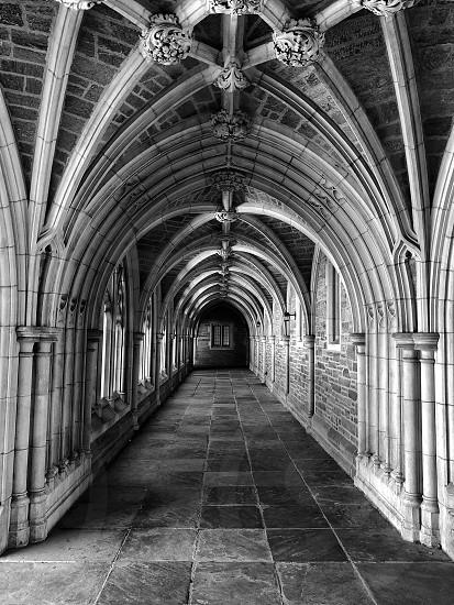 Cloisters architecture historical building structure design Princeton University  photo