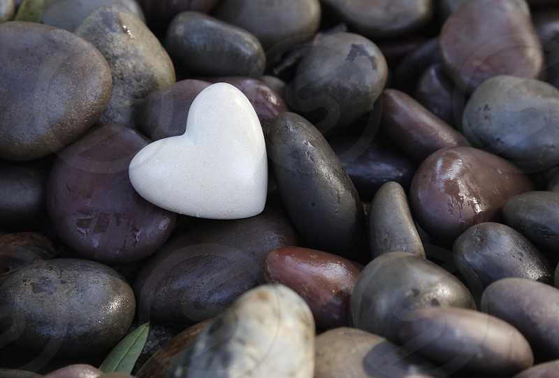 Stone Heart on Wet Rocks photo