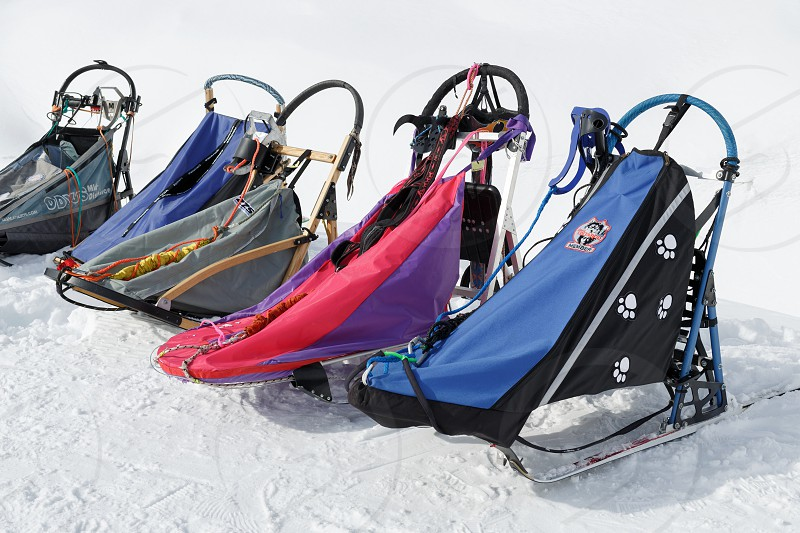 PETROPAVLOVSK KAMCHATKA PENINSULA RUSSIA - MARCH 1 2018: Many colorful sports dog sled or dog sleigh for snow sports disciplines - dog sled racing stand on white snow in clear sunny weather. photo