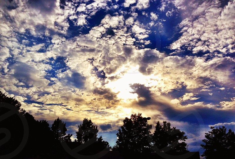 blue sky with clouds over trees photo