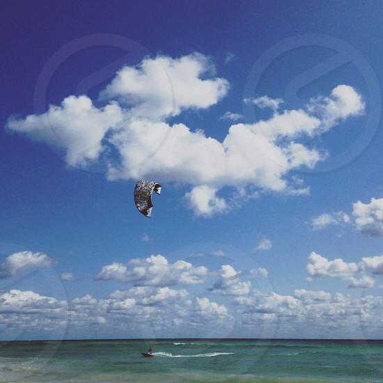 multi colored kite photo