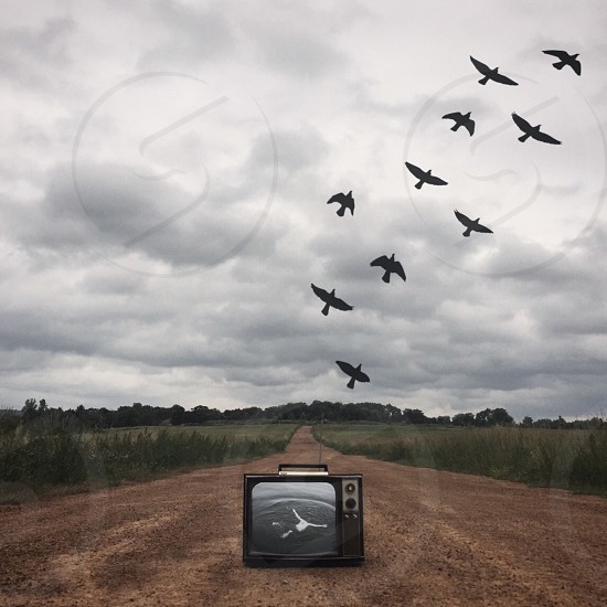 black crt tv on brown dirt pathway with 10 birds flying over it during daytime photo