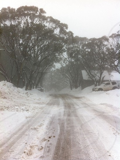 Winter in Australia on Mount Buller photo