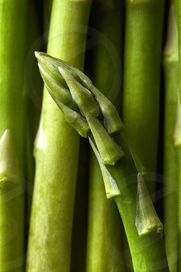 Detail of green asparagus officinalis vegetables. Food background. Flat lay photo