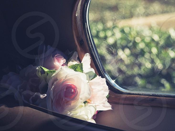 Flowers in the window. photo