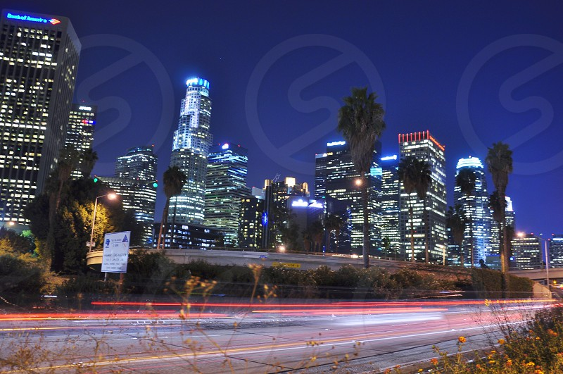 nighttime view of illuminated skyscraper cityscape by busy street with neon lights photo