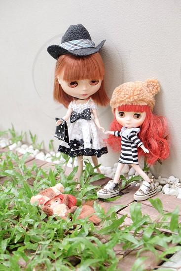 Sister doll blythe diversity playful  photo