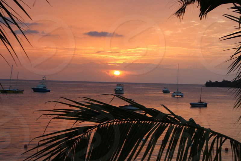 Jamaican sunset photo
