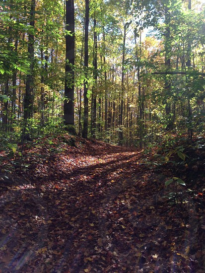 Running the North Country Trail photo