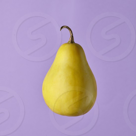 fresh picked pear in air isolated on purple background. The concept of a healthy diet or of homegrown photo