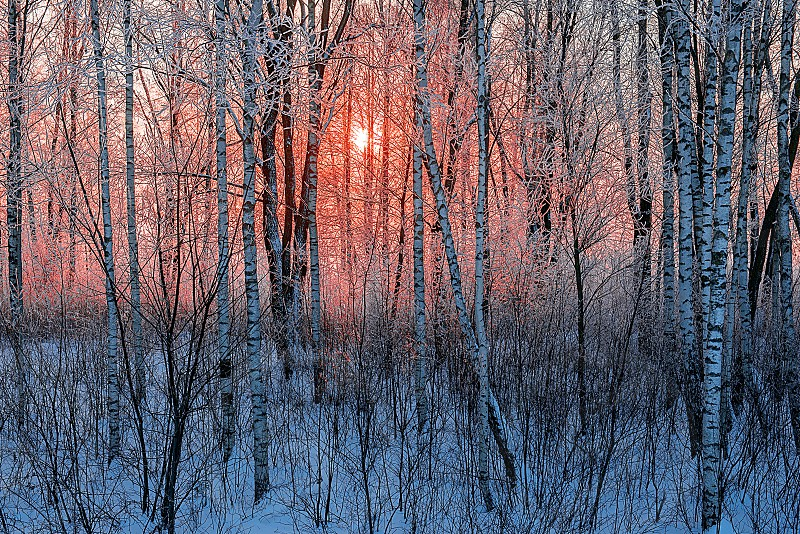 Beautiful winter morning sunrise photo