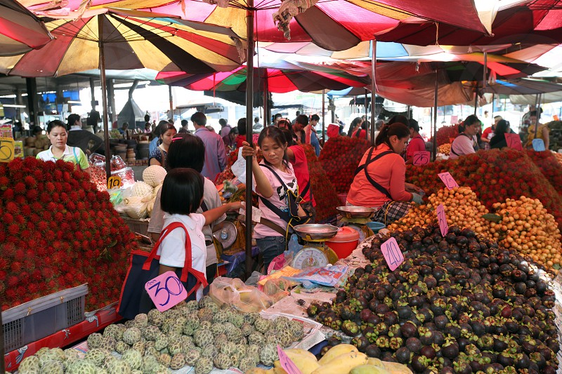 the fruitmarket at the market in the city of Amnat Charoen in the Region of Isan in Northeast Thailand in Thailand.