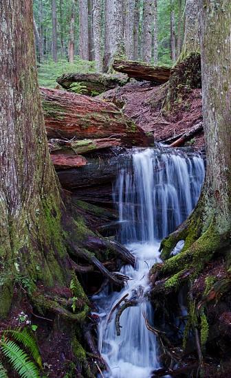 silk water photography of waterfalls photo
