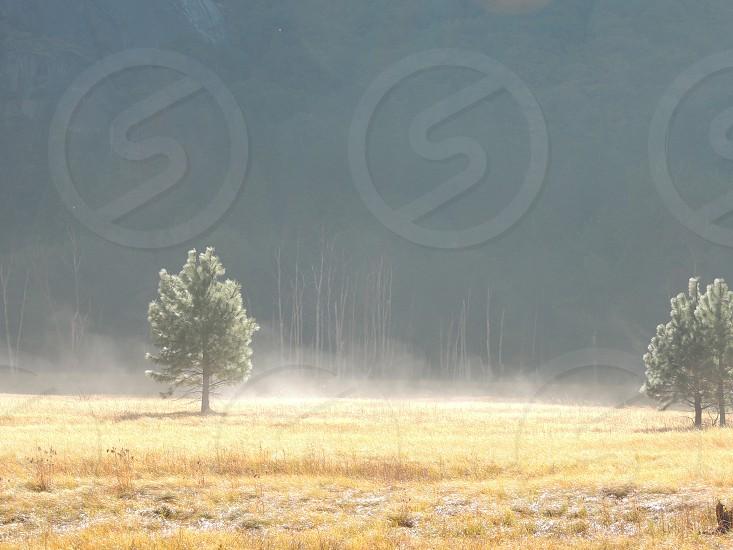 Yosemite Valley morning mist photo