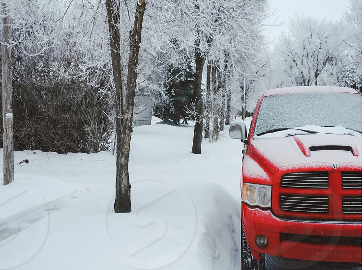 Snow frost cold day red truck. photo