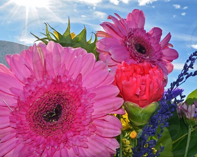 flowers flower bouquet arrangement colorful photo