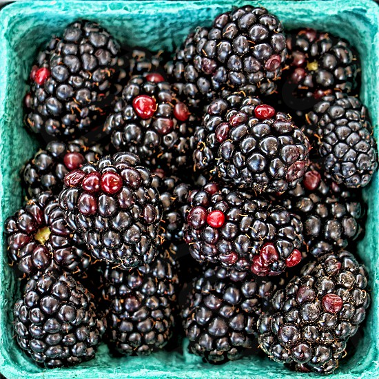 Macro and aerial image of fresh organic blackberries. photo
