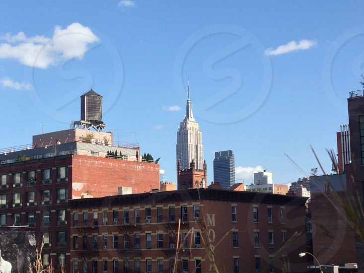 Empire State building from the High Line Park photo