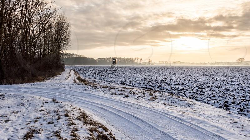 Winter in South Moravia region - Czech Republic photo