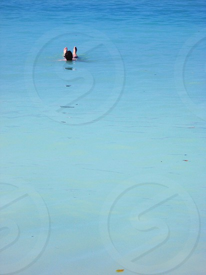 Freedom water ocean sea vacation tropical beach summer floating photo