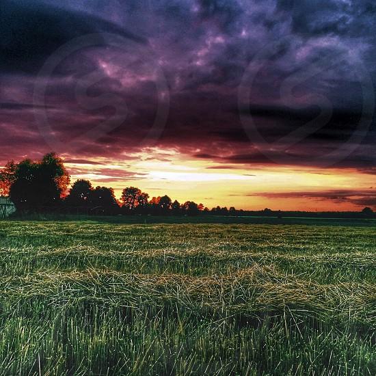 Polish Farm photo