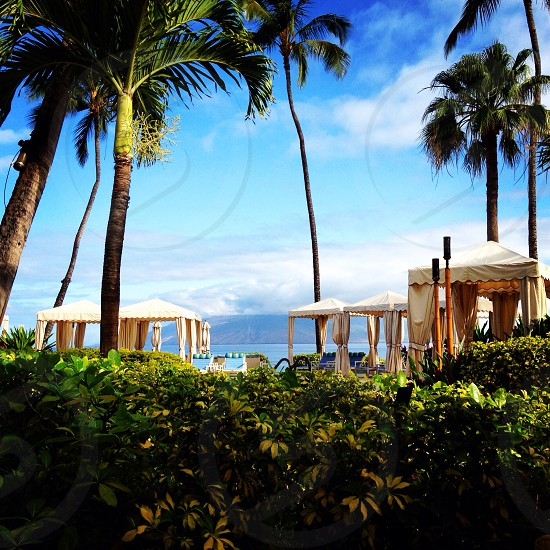 'beach life' Four Seasons Resort; Wailea Maui photo