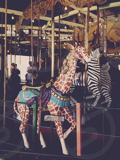 animals carousel  photo