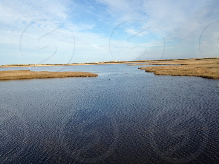 Marsh on Bodie Island - Outer Banks of North Carolina photo