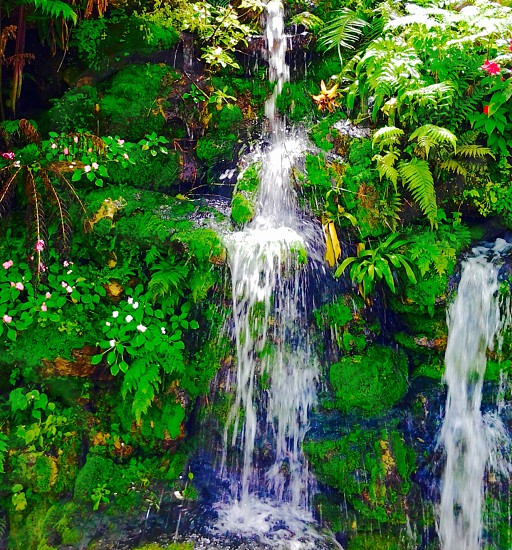 Waterfall greenery tropical photo