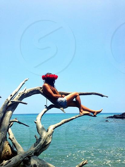 woman sitting on tree watching a sea view  photo