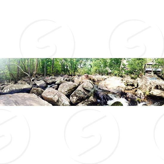 rocks near green trees photo