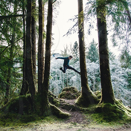 man jumping through forest trees with moss at the basses photo