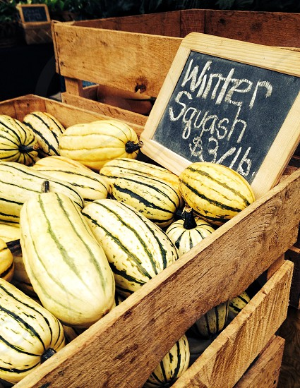 yellow and brown winter squash saled on 3 dollars per pounds photo