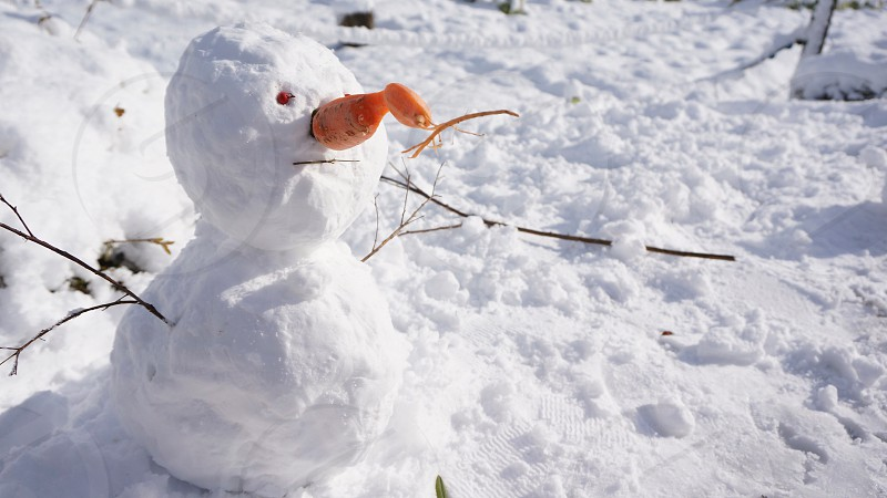 snowman on snow covered ground photo