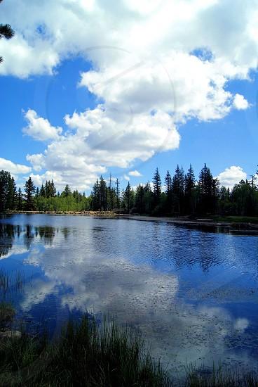 Aspen Mirror Lake Utah photo