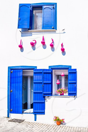 Greek Traditional House With Blue Windows  White Wall Flowers And Pink Decorative Pumpkins photo
