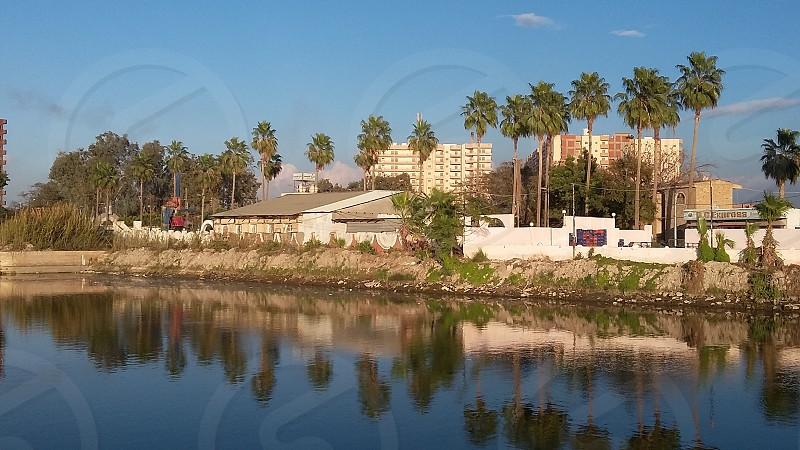 a group of palm trees behind a small house and their is a small river. their is an awesome reflection on the water photo