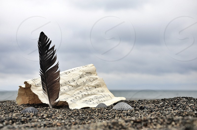 feather and paper with note print on sand photo