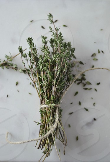 Thyme herbs rustic food photo