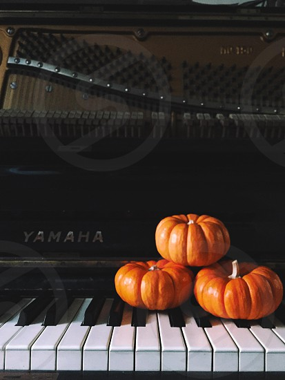 3 mini pumpkins on piano photo