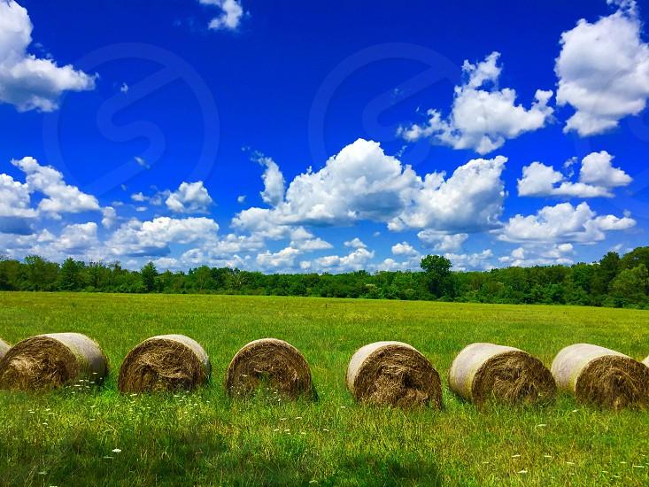 Hay hay bales farm summer sunshine blue skies nature cloudscape green farm life  photo
