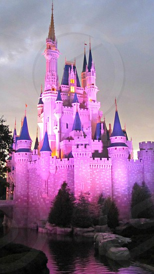 Nighttime View of Cinderella Castle at Disney World photo