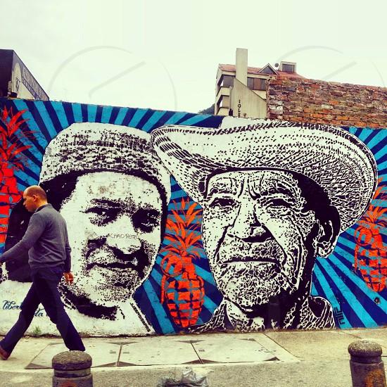 Bogotá street art (artist: DJ Lu) photo