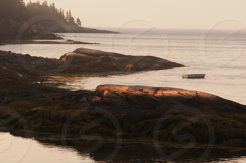 Acadia. Boat. Sunrise. Atlantic Ocean. photo