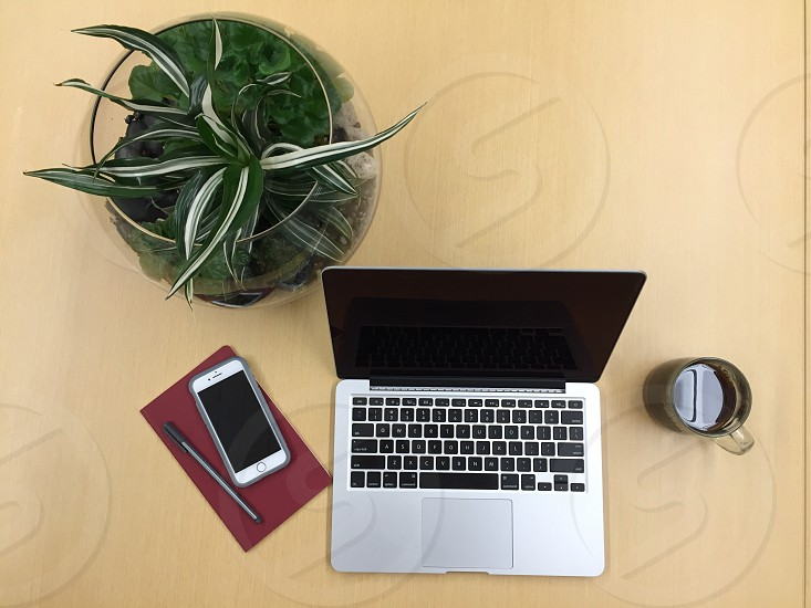 Laptop computer cell phone notebook pen coffee plants photo