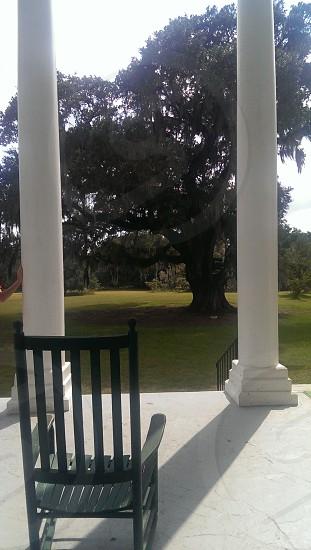 front porch rocking chair George Washington Oak tree Hampton Plantation SC photo