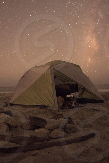 Summer camping night beach dog pet animal nature stars sky tent campsite rocks sand water long exposure  photo