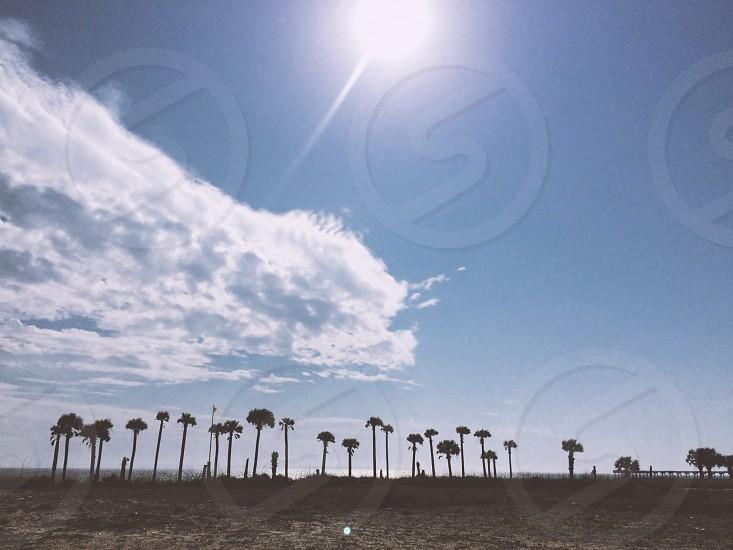 Panama City Beach Florida photo