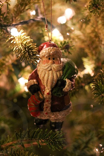 Tree evergreen lights Santa decoration Christmas  photo